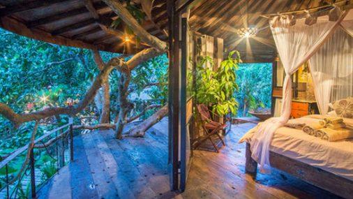 Pelaa NetEntin uutta Jungle Spiritiä Mr Greenillä ja voita Balin-matka